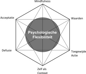 Figuur 1.2 ACT-Hexaflex
